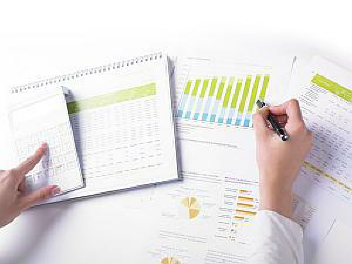 Marketing and preparation of feasibility studies